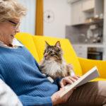 Residence Senior: con Domitys, soluzioni abitative per non sentirsi soli